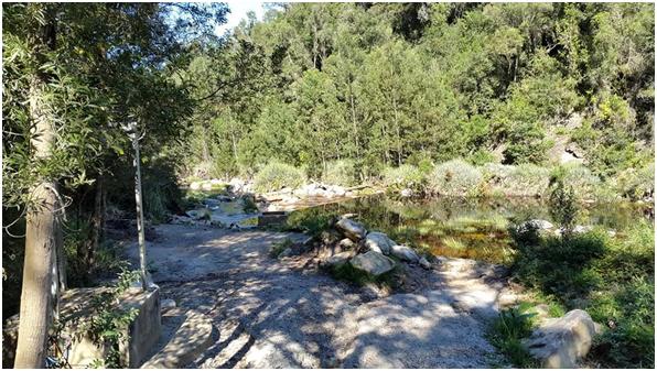 Scenic-River
