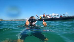 snorkel plettenberg bay