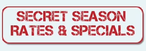Blog Specials