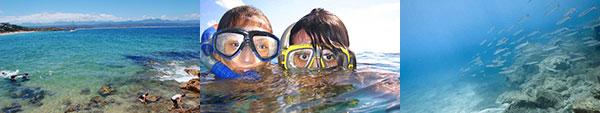 snorkel-plett