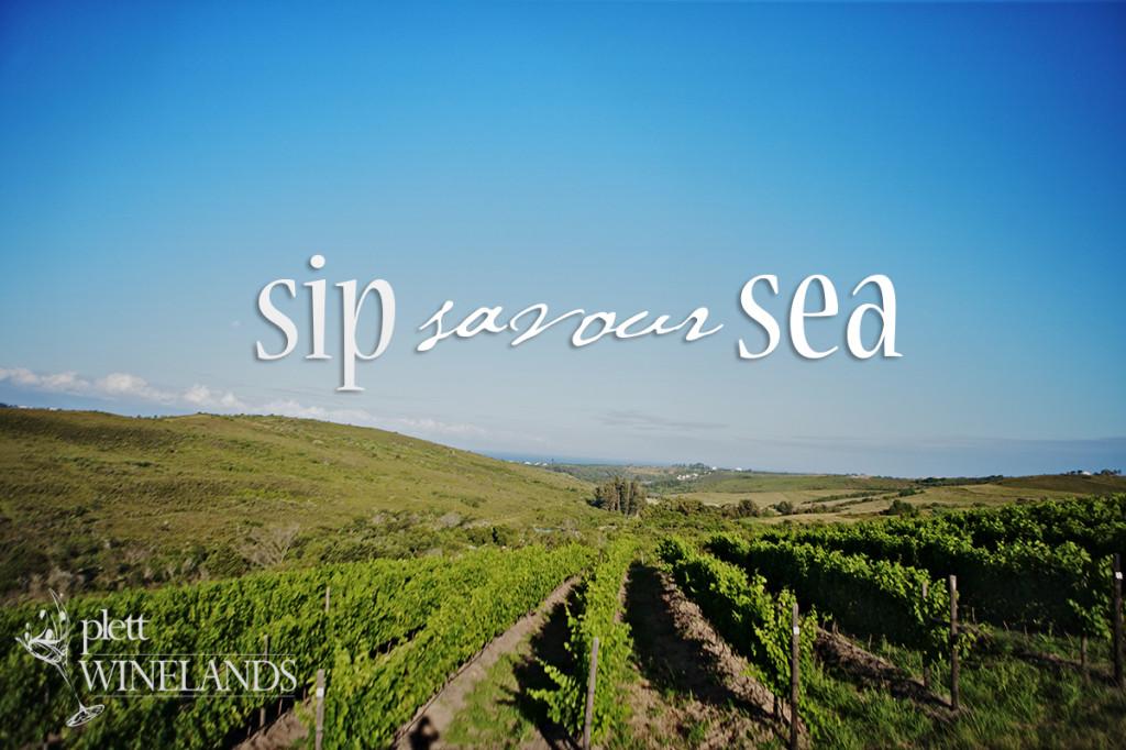 Winelands Timeline3