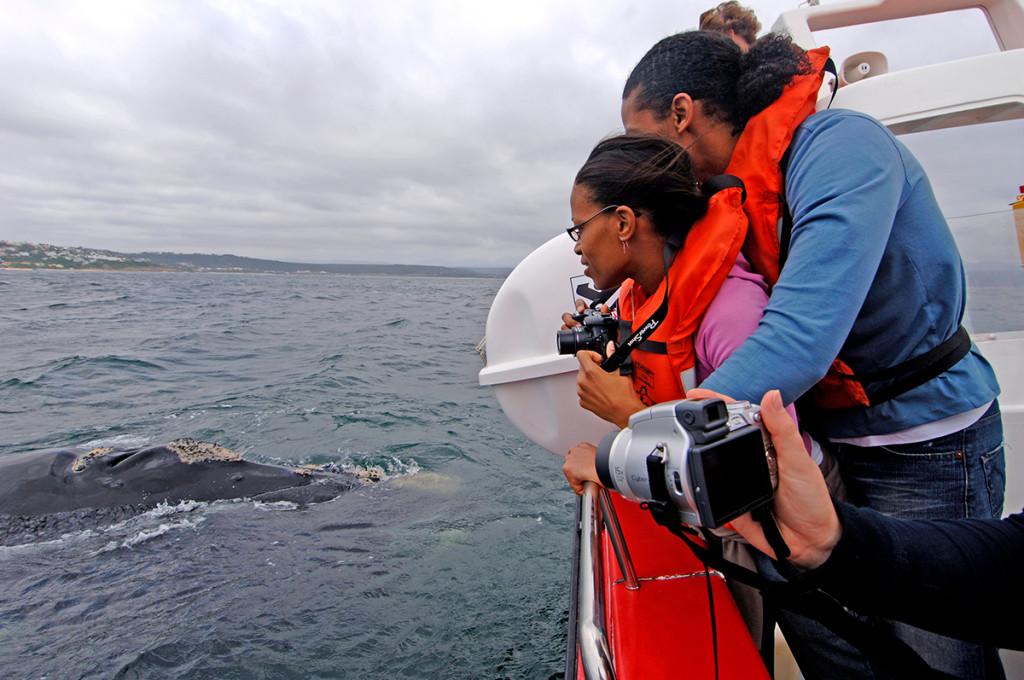 Photo: Ocean Blue Adventures