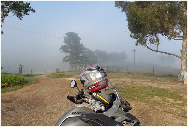 Misty-Morning-Plett