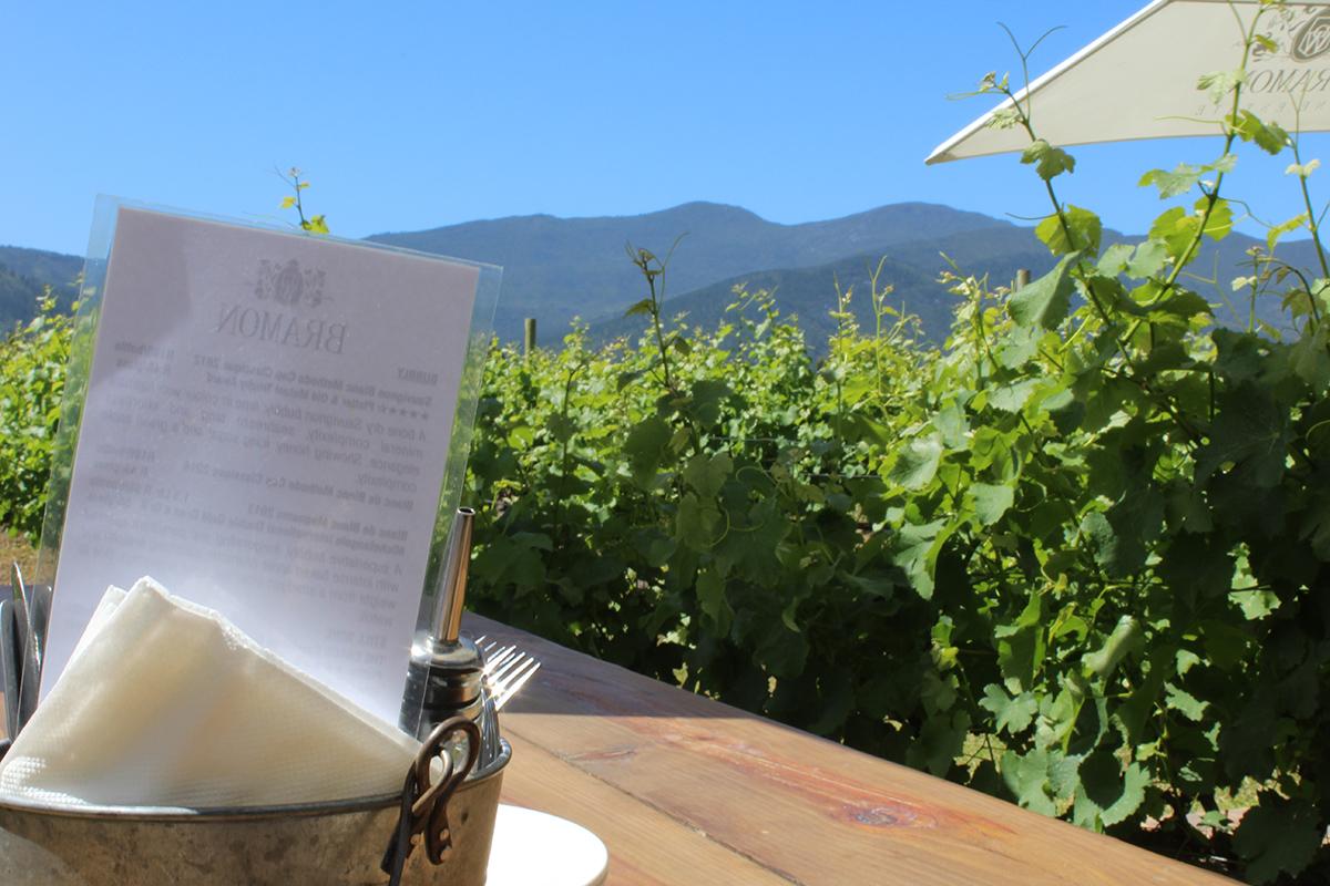 Plett-Winelands